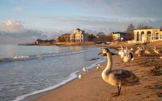 Крым в декабре 2021: Топ-7 отелей для отдыха. Цены, отзывы, погода
