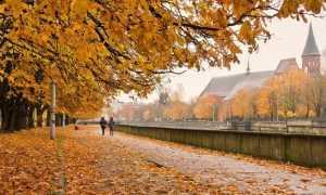 Топ-9 мест в Калининграде осенью: Что посмотреть?