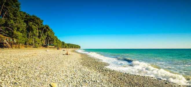 Топ-7 мест для отдыха в Цандрипше 2021: Цены в частном секторе