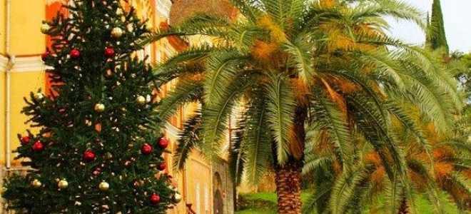 Топ-9 отелей на Новый год в Абхазии 2021/2022. Лучшие цены