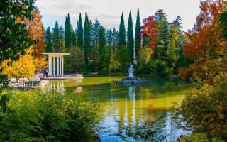 Топ-7 мест в Сочи осенью 2021: Что посмотреть? Цены